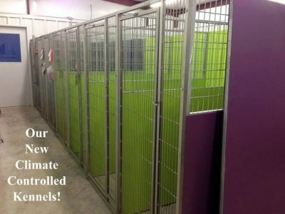Our new climate controlled kennels